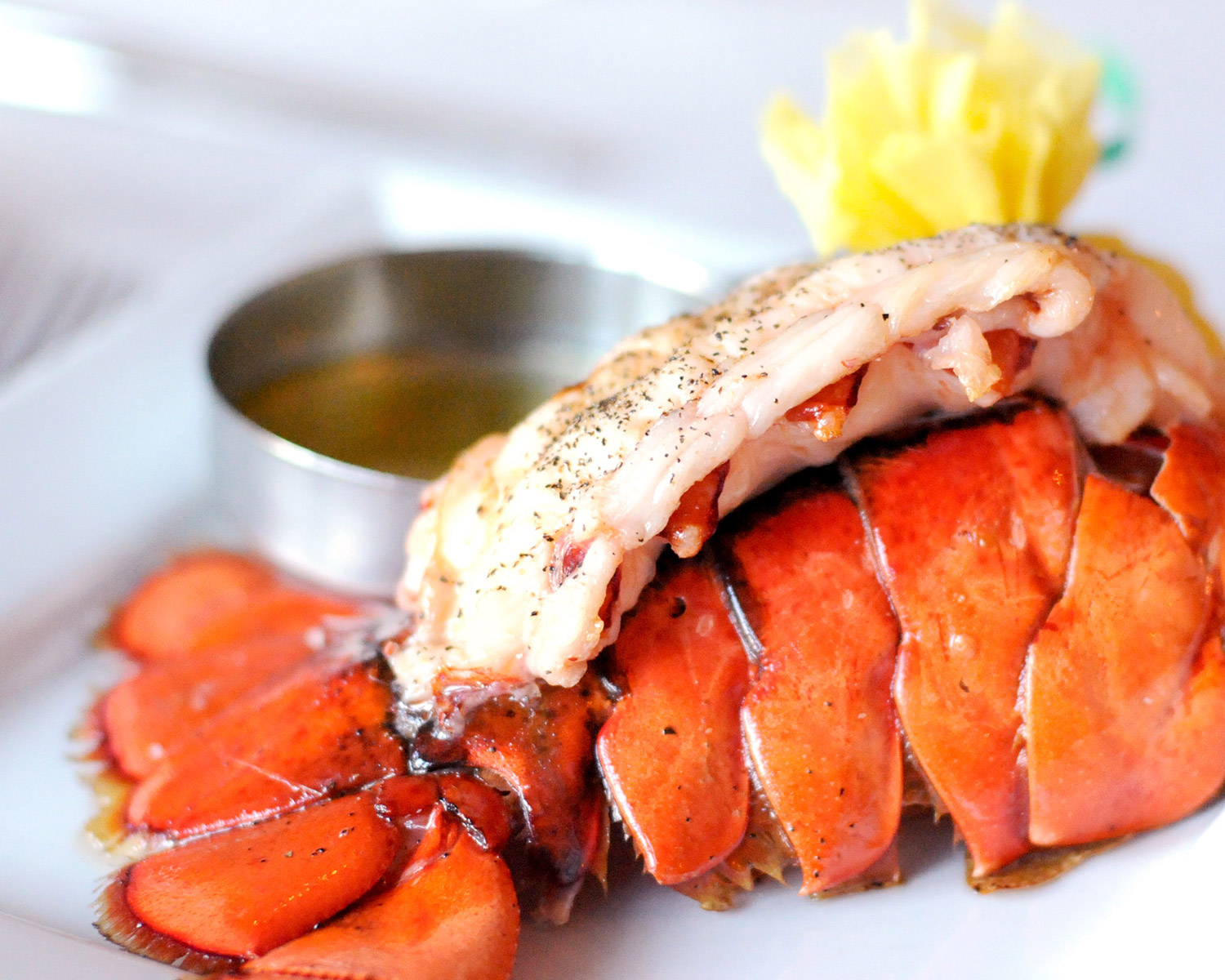 Photo: lobster tail entree